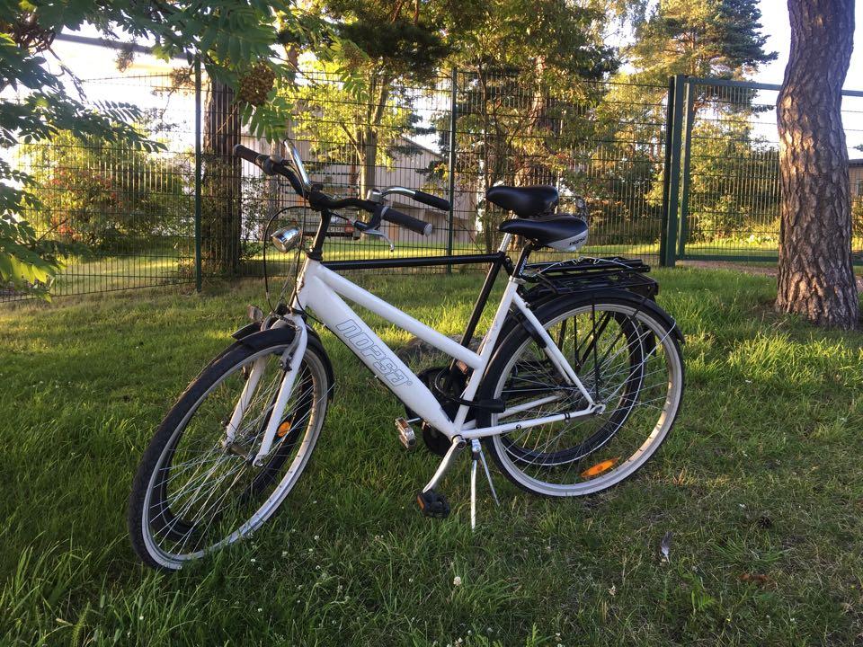 Pyöräillen Helsingissä, Anu Pellas